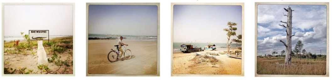 Four images of color prints - L-R: 'Beware of the Crocodiles' The Gambia; Young boy rides his bicycle on a beach, Gambia; 'Fishing Boats' on a beach, Gambia ; 'Skeleton Tree' image of a bare tree, in nature