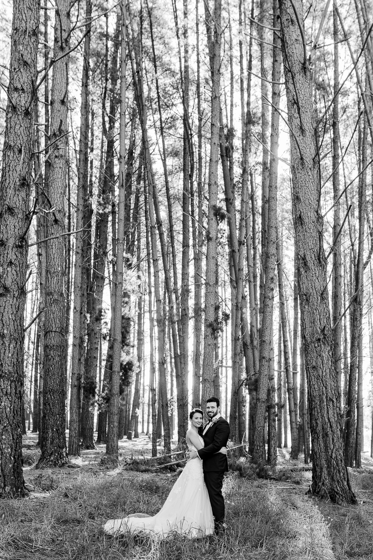 wedding photography in a forest