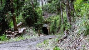 Lilyvale Tunnel No. 5 - Northern Portal