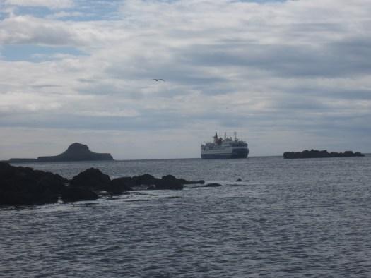 Cruise Liner  Calls