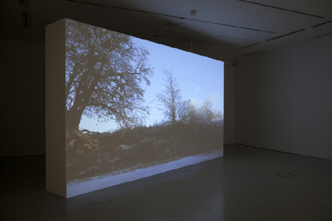 Pond : Video Installation - Oriel Davies, 2013