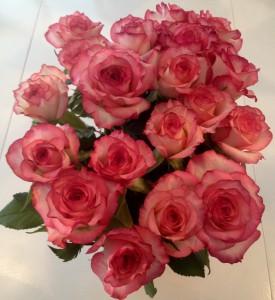 Roser er fin hverdags-luksus som gir ny frisk energi og symboliserer kjærlighet.