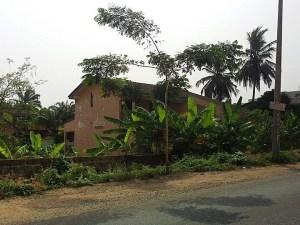 Nzema house