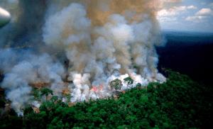 Αμαζόνιος SOS