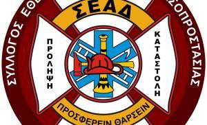 Σύλλογος Εθελοντών Αφιδνών Δασοπροστασίας στην πυρκαγιά στην περιοχή του Αγίου Στεφάνου