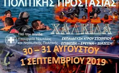 ΠΑΝΟΡΑΜΑ ΠΟΛΙΤΙΚΗΣ ΠΡΟΣΤΑΣΙΑΣ2019