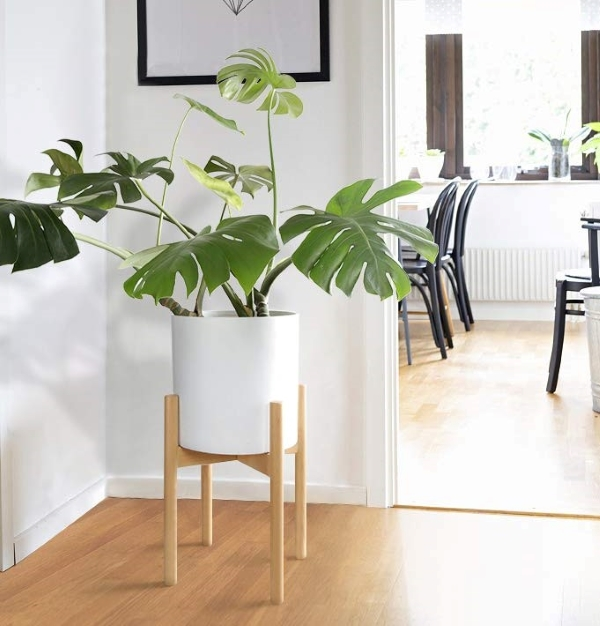natural wood plant stand decor