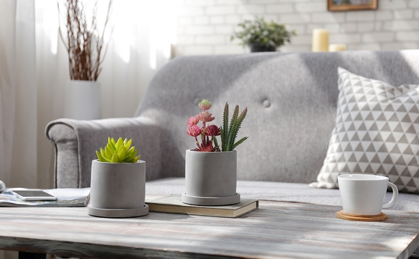 minmalist concrete planters for succulents