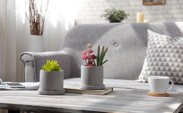 minmalist concrete planters for succulents