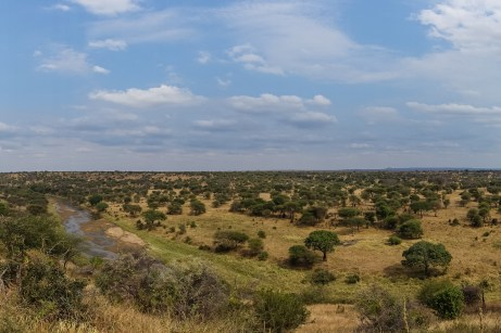 Panorama im Tarangire National Park
