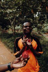 Gewürztour in Sansibar