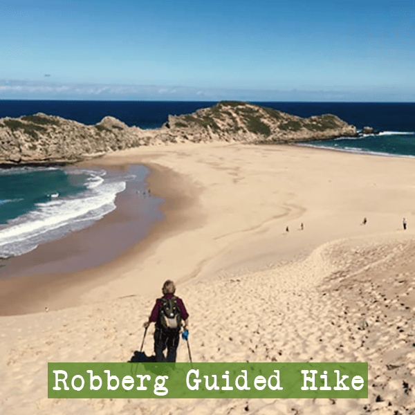 Hello Adventure | Robberg Nature Reserve Guided Hike