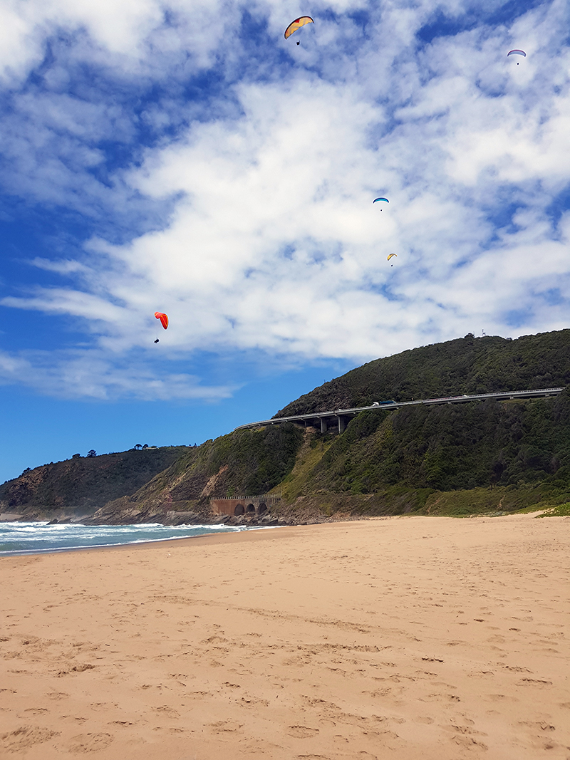 HelloAdventure.co.za - Photo of paragliders over the beach in Wilderness