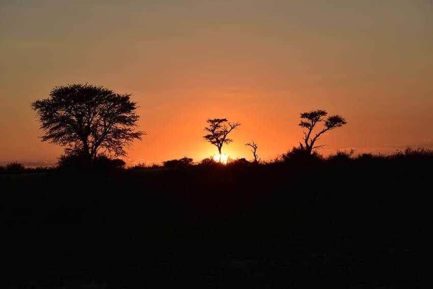 Bye bye Africa… hello Africa…