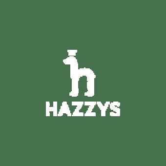 hazzys X hellodigital