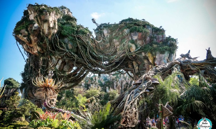 Pandora Avatar - Walt Disney World