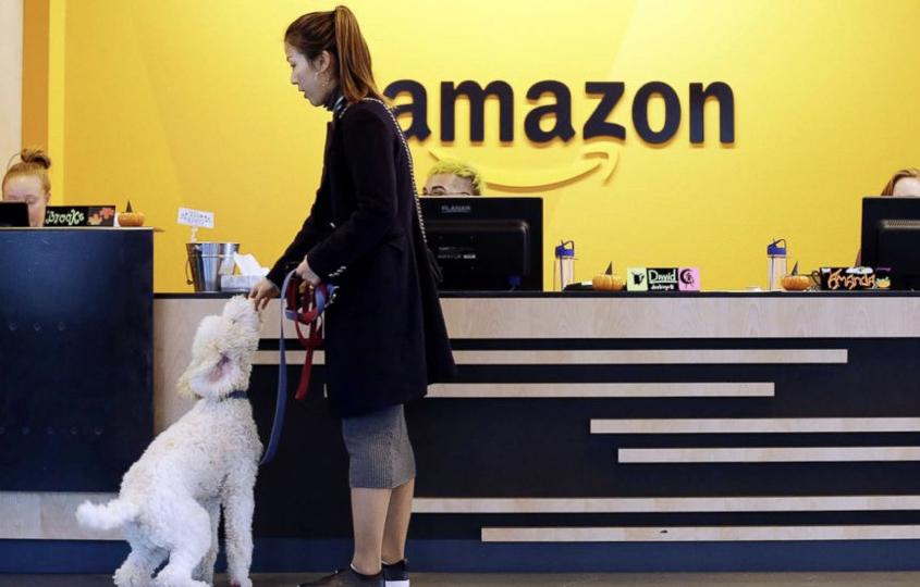 亞馬遜Amazon 讓每日都是「帶狗上班日」