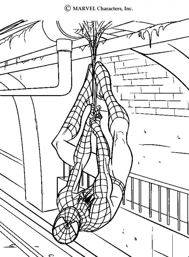 spider man coloring pages the amazing spiderman