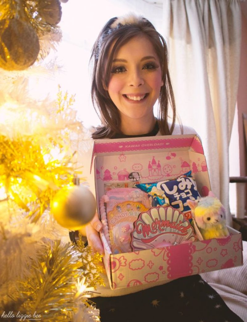A Kawaii Christmas celebration with Kawaii Box by hellolizziebee