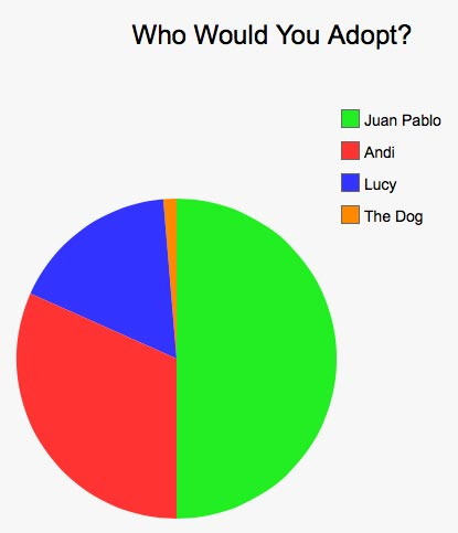 Would you adopt the dog, Bachelor juan pablo, lucy or ansi?