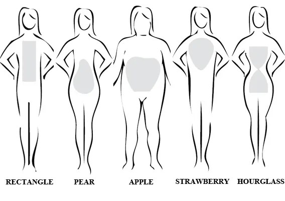 Image result for body types women