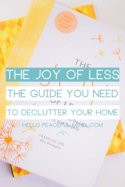 Book Review: The Joy of Less, a Guide to Declutter your Home.
