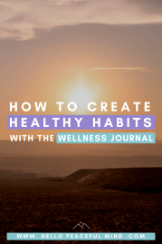 How To Create Healthy Habits With The Wellness Journal