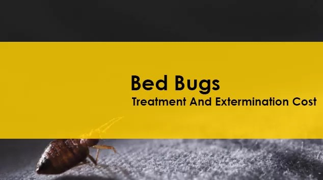 Bed Bug Treatment And Extermination Cost Guide
