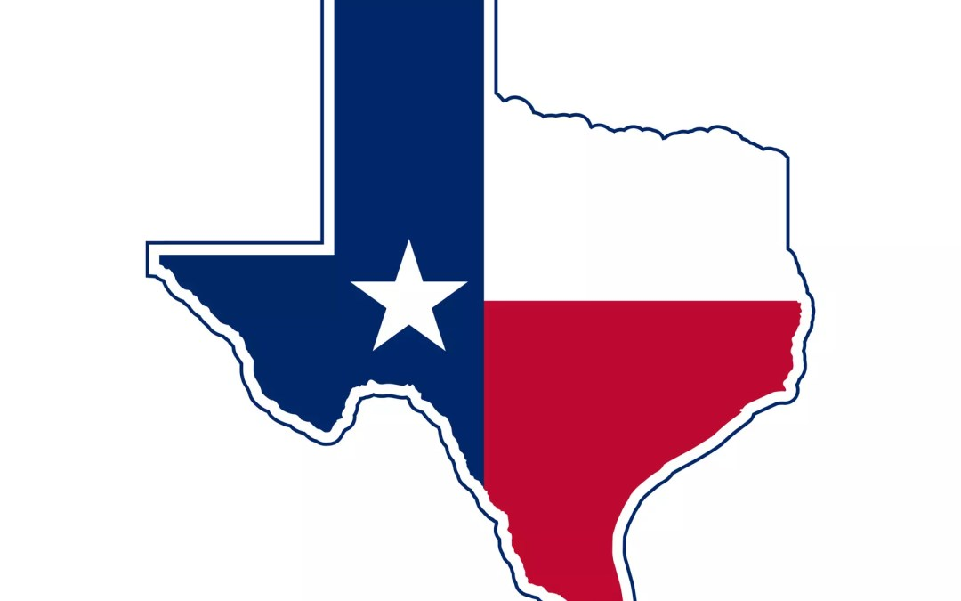 State Specific Summary: Howdy, Texas!