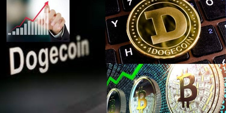 Bitcoins in india , cryptocurrency, Dogecoin today rate, Dogecoin future, Dogecoin price, lpnt price, Bitcoins india price, Bitcoins in to inr, Tesla, Bitcoin, Dogecoin,