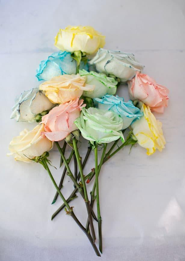 Carnations Fair Science Rainbow