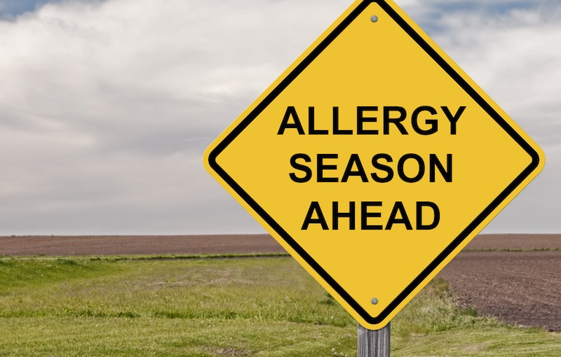 What Is the Best OTC Treatment For Seasonal Allergies?
