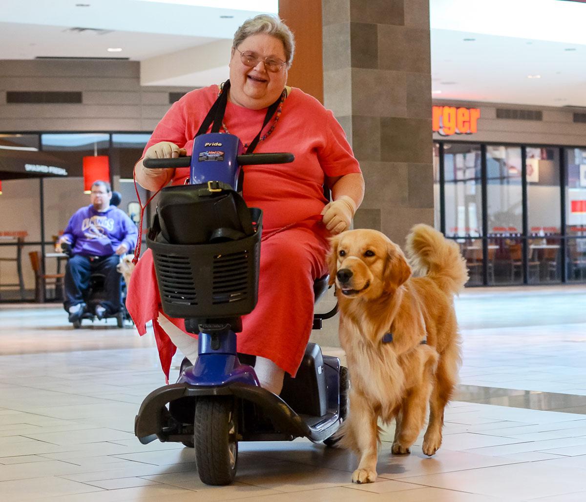 Evaluating Assistance Dog Organizations