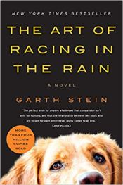 art of racing in the rain garth stein
