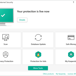 Uninstall Kaspersky without password