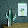 cactus DIY's hemelsblauw