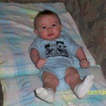 Hemlock_babies (57)