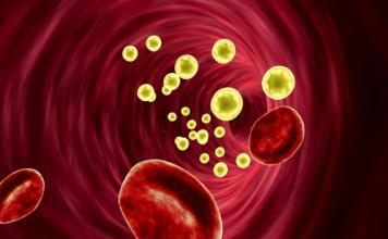 Receta para eliminar grasa en sangre