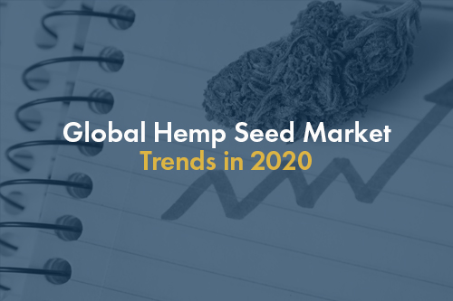 Global hemp trends in 2020