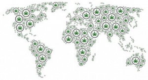 world map marijuana