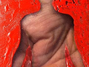 tavole anatomiche 043