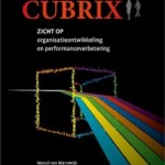 Marcel van Marrewijk – Cubrix: zicht op organisatieontwikkeling en performanceverbetering