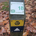 Wandelen over het Drenthepad van Norg naar Peizerwold