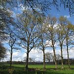 4e Driehoektocht wandelen vanaf speeltuin De Driehoek in Deventer