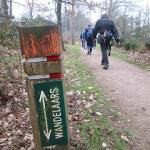 50km mars rond Hengelo