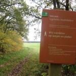 Over de Veluwe van Apeldoorn naar Arnhem wandelen