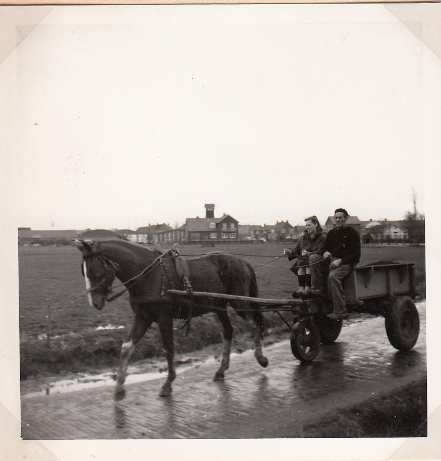 Harmen Pol met paard en wagen