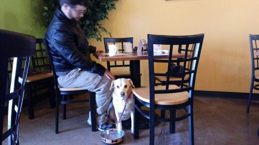 Three pet friendly places we frequent in wichita kansas henleys levi and i love to eat out especially breakfast on our first day off from work we typically go to a restaurant and then run back to the motorhome to pick solutioingenieria Images