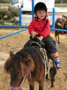 Pony Ride in San Francisco