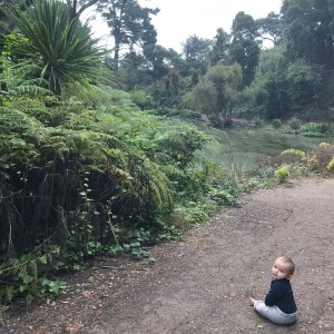 Golden Gate Park with Kids